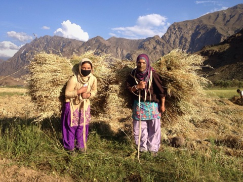 Abida en Farida, twee zotte madammen op 't veld