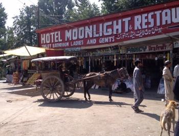 Busrit Srinagar – Delhi: have a break, have a chai