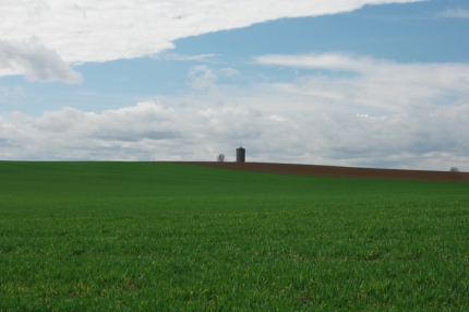 The horizon in Flanders fields or Wallonia is actually the same #Belgium