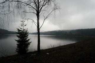 The lake of Eupen: in need of some rain? #Belgium