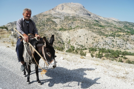 That same day I met another Ibrahim, sitting on his donkey, riding to his field. He invited me to his place, down in the valley, to eat üzüm (grapes) together. I refused because I wasn't into climbing from the valley to the main road again. But it was just a nice encounter #Turkey