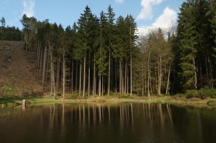 Entering national park Český ráj #CzechRepublic