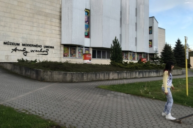 In that same village (Medzilaborce) they have an Andy Warhol Museum of Modern Art #Slovakia