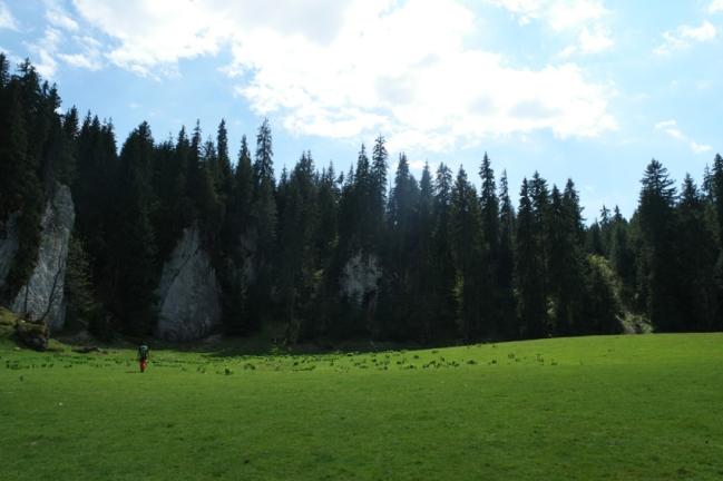 Hiking in Apuseni mountains. Stunning! #Carpathians #Romania