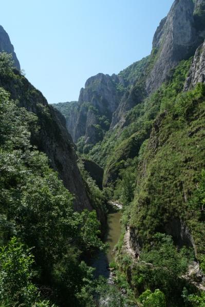 Small paths along the river #CheileTurului #Romania