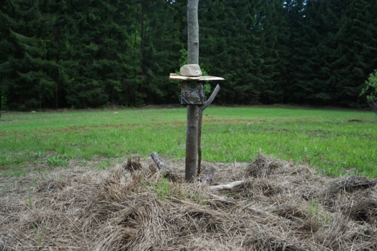 Hay in the middle of the field and a bird box too #WWF #Romania