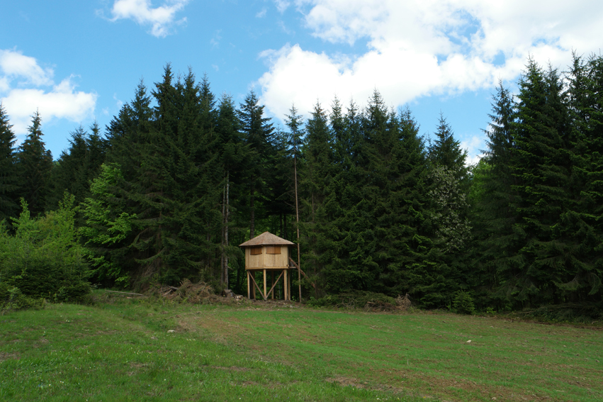 WWF realised this observatory #WWF #Romania