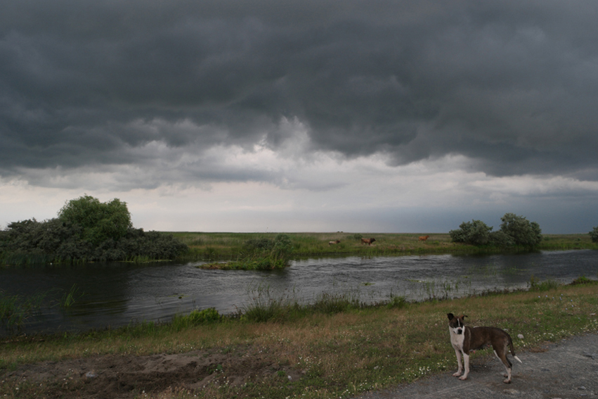 The clouds changed super fast, so did the weather ;-) #Danube Delta #Romania