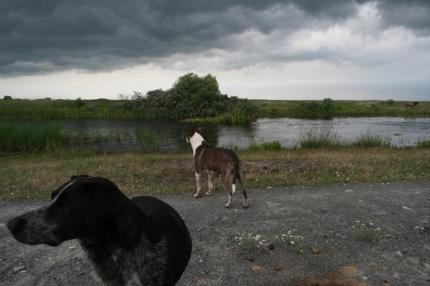 #Danube Delta #Romania