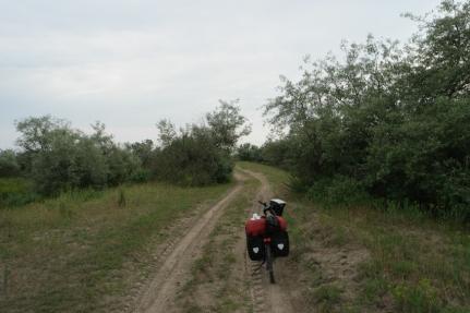 The road became sandy #Danube Delta #Romania