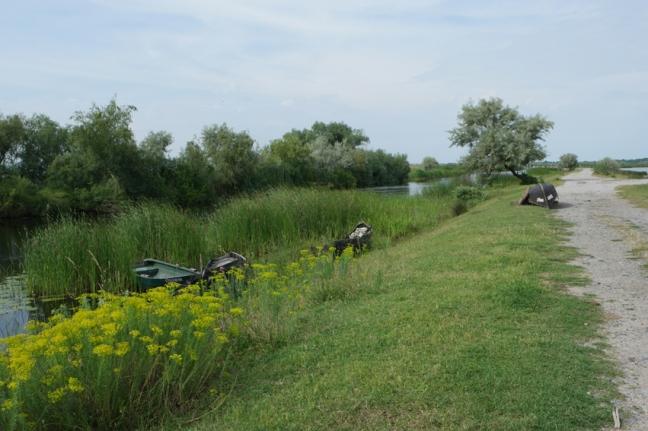 Civilization is approaching #Danube Delta #Romania