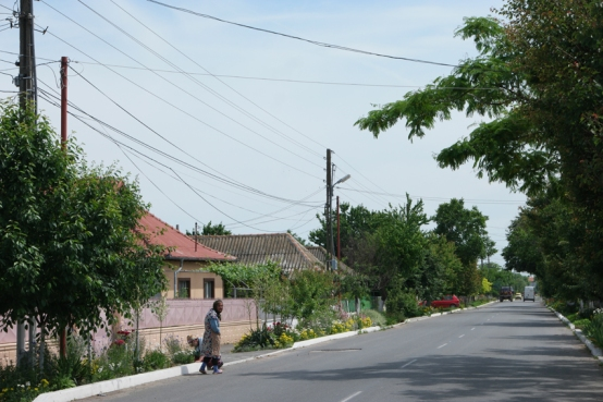 And also the villagers planted nice flowers along the road #Romania