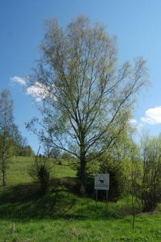 Yeay, also in Bieszczadzki national park in Poland I saw a WWF sign