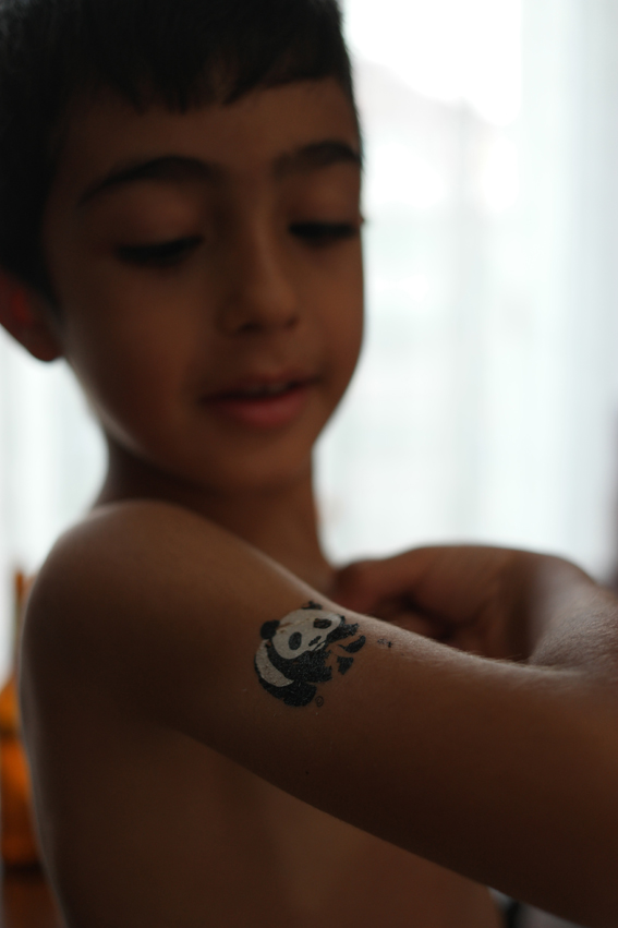 Ioana gave me some lovely WWF tattoos. Ege was very proud to show his muscles and tattoo #Turkey