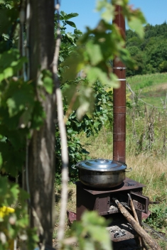 Boiling water for the çay (tea) #NarköyOrganicFarm #Kerpe #Turkey