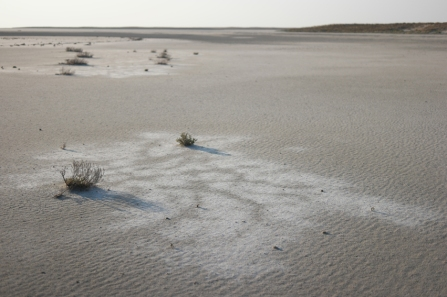 Sand with salt near #TuzGölü #Turkey