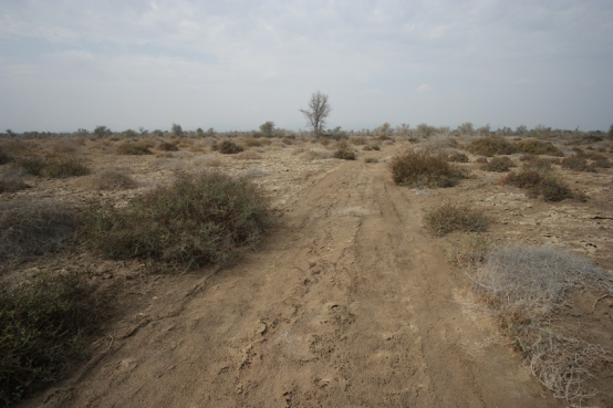 Taking my first dirt road again wasn't easy. But you can only conquer fear by facing it #Oman